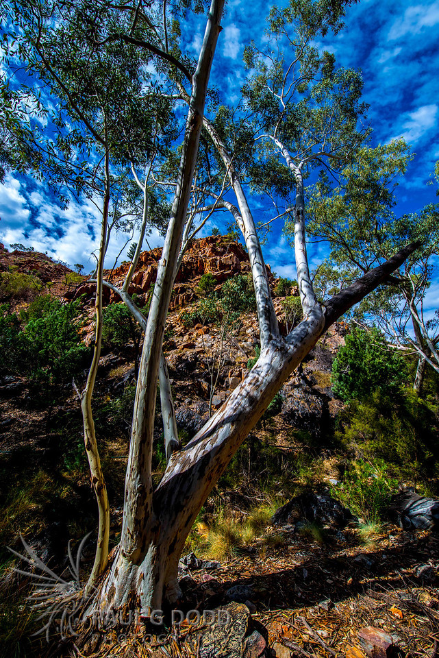 Standley Chasm, Northern Territory