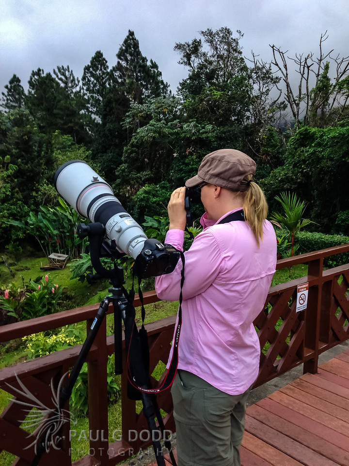 Photographing birds from the balcony at Arenal Observatory Lodge in the early morning