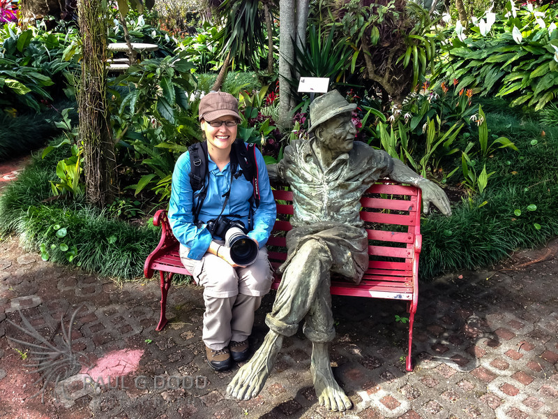 Hotel Bougainvillea gardens