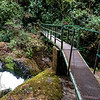 Waterfall trail, Savegre
