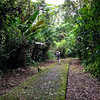 Photographing birds at La Selva