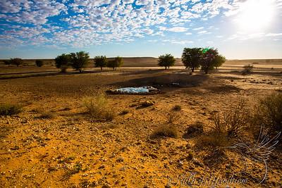 Waterhole at Kgalagadi