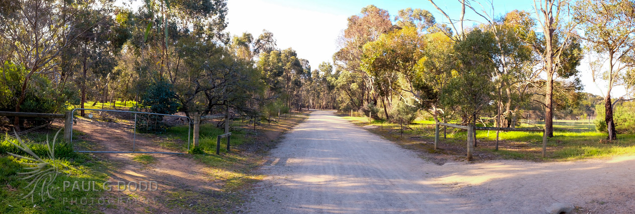 The Loop Road from outside the Wallaby Enclosure