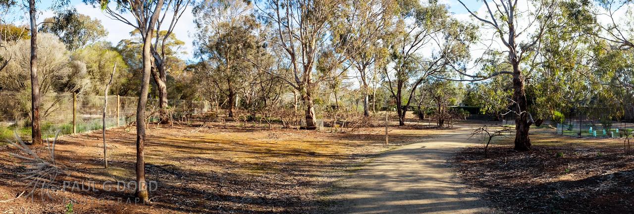 The Wallaby Enclosure