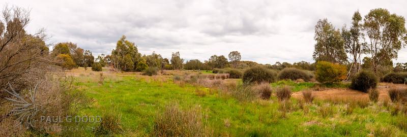 Farm Dam from the far hide