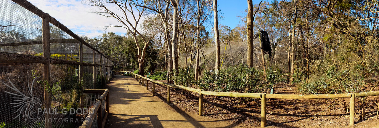 The Walk alongside the Quoll and Freckled Duck Enclosures