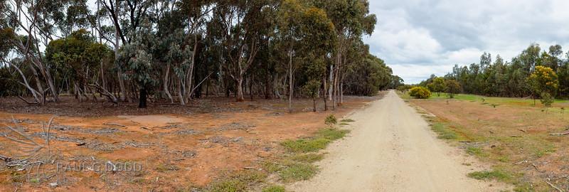 The Loop Road