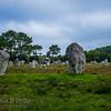 Kermario alignments, Carnac, Brittany