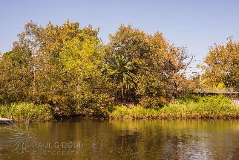 Yarra River, South Yarra