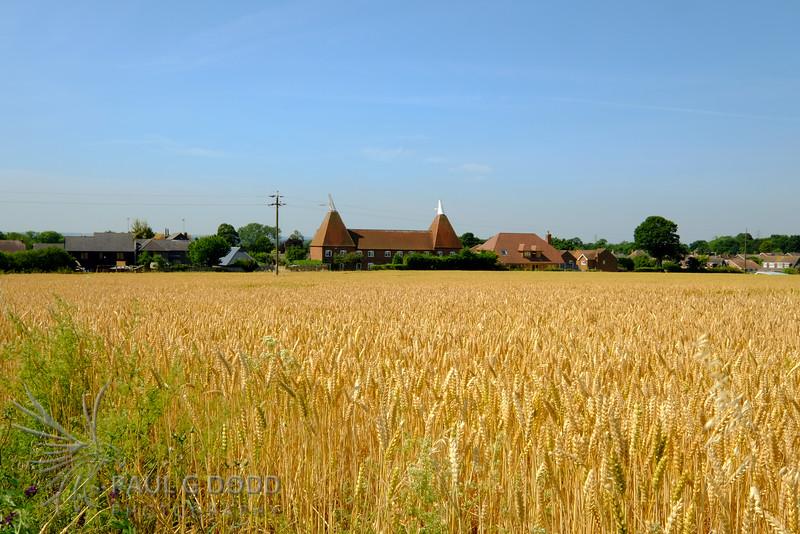 Monkton field