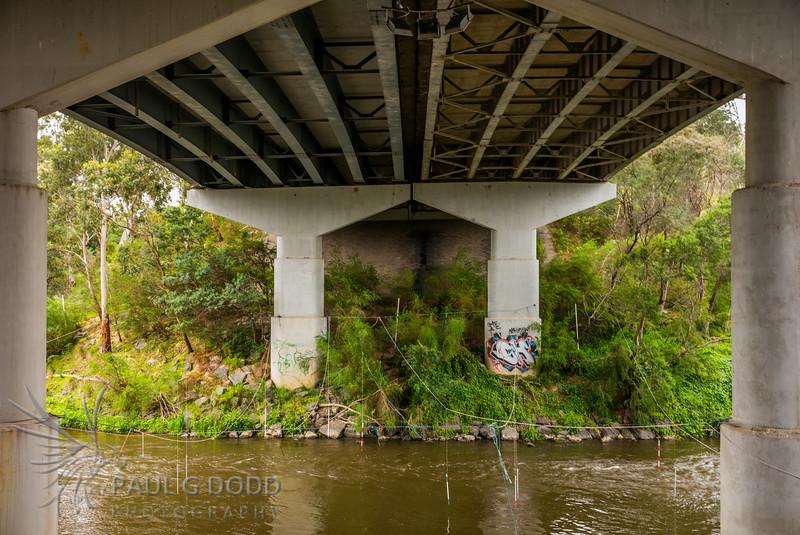Fitzsimons Lane Bridge