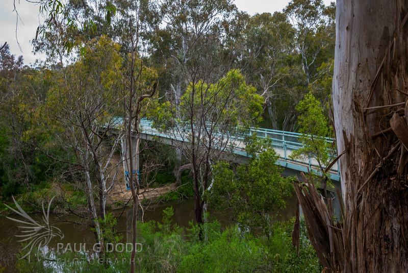 Westerfolds Park Footbridge
