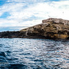 Lawrence Rocks