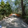 O'Shannassy Reservoir Access Road Bridge