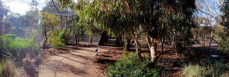 The Dryland Aviary
