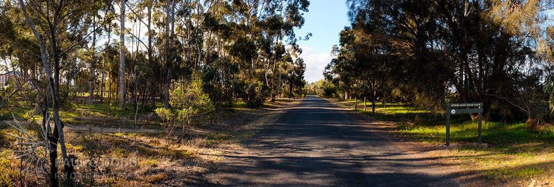 The Entrance Road looking from the front gate