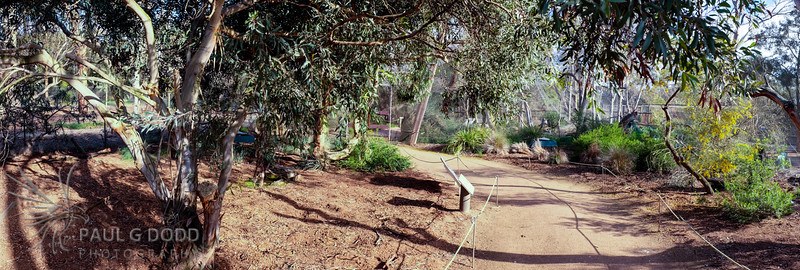 The Dryland Aviary