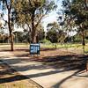 The Kangaroo Paddock