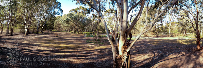 The Wallaby Enclosure from The Walk
