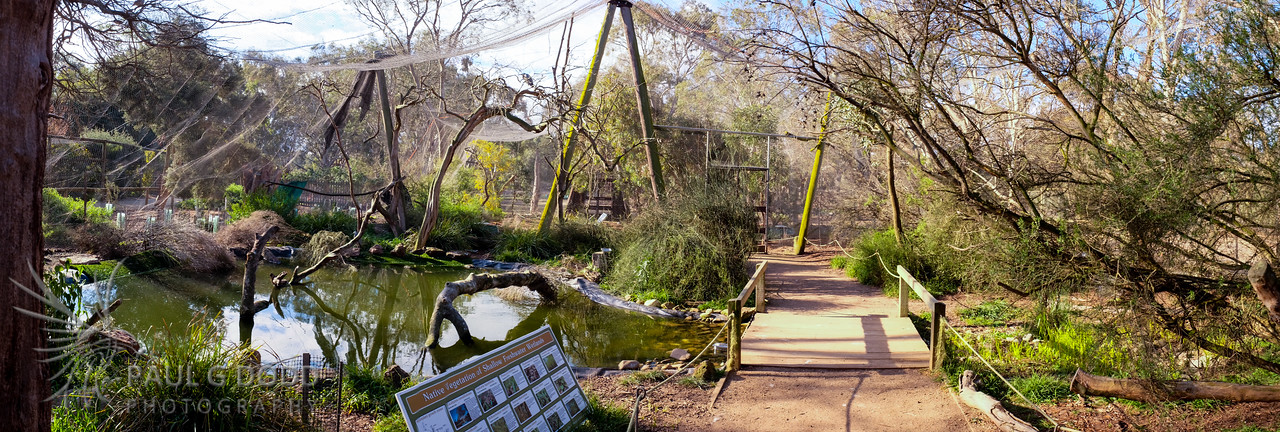 The Wetland Aviary