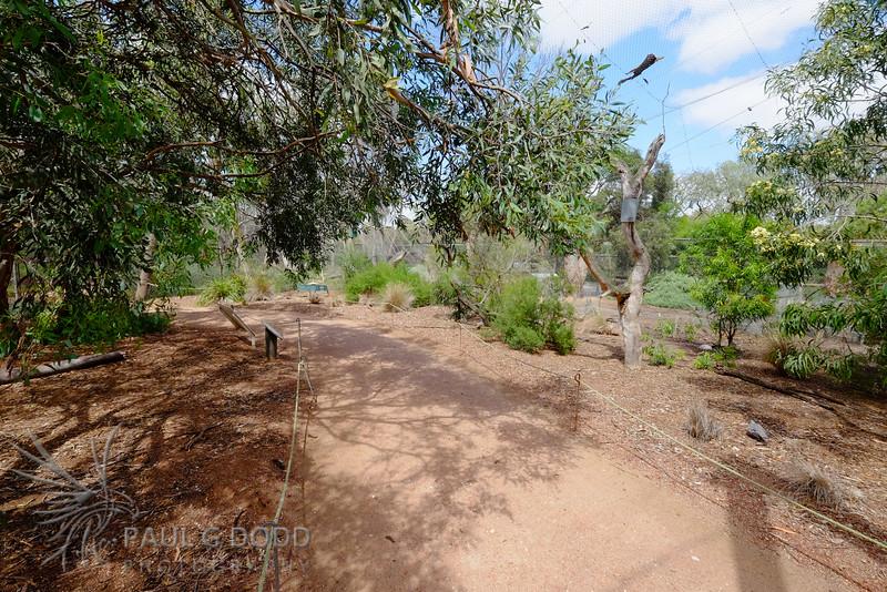 Dryland Aviary, Serendip Sanctuary