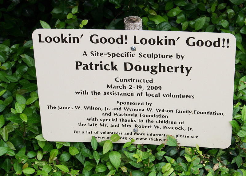 Patrick Dougherty's sign