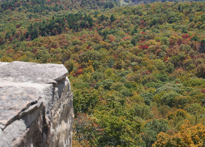 Beautiful fall colors from the Black Rock State Park Visitors' Center