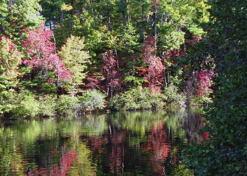 Beautiful fall colors reflecting in lake at Unicoi State Park