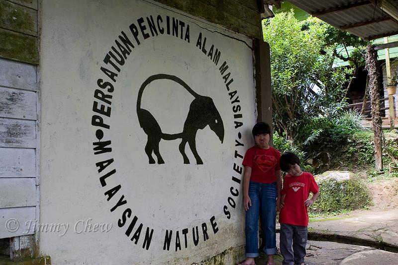 The tapir.