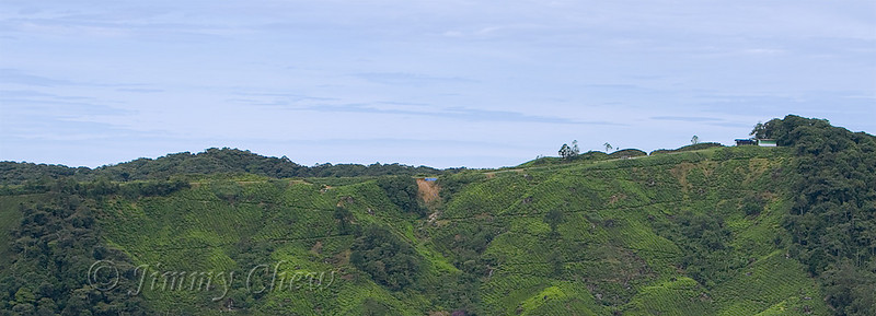The airstrip as photographed from Gunung Cantik.