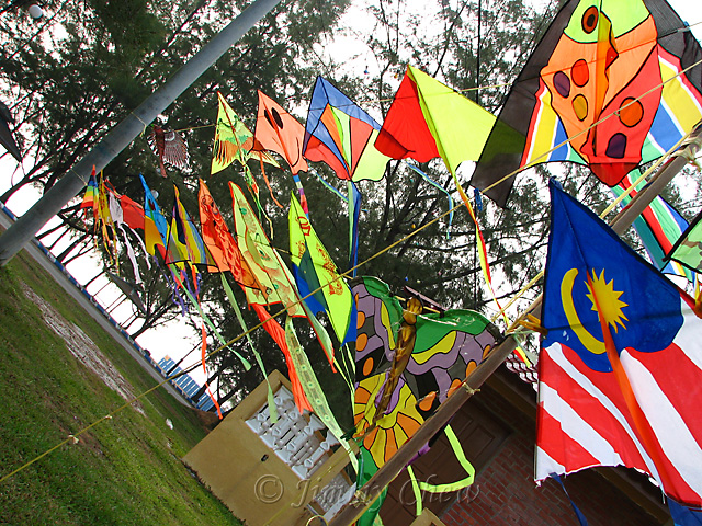 Kites for sale.