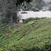 View of the MNS-BOH Field Study Centre from hillside.