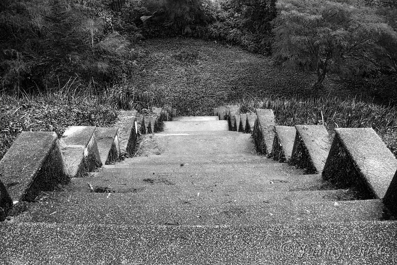 Nostalgic stairway to the hill a level below. May look creepy to some due to B&W rendition of this photo.