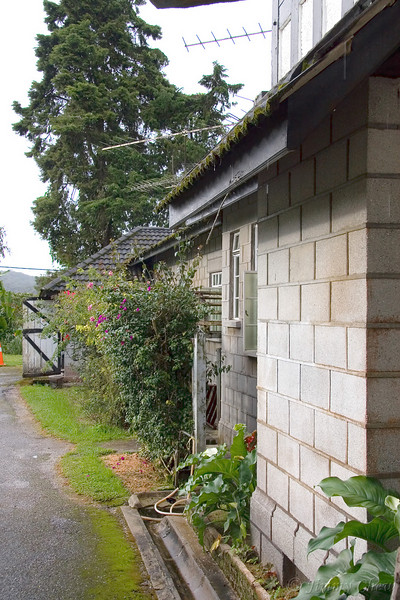 Also at the backyard - this is the side of the extended bungalow where Mrs. Chong (caretaker) resides.