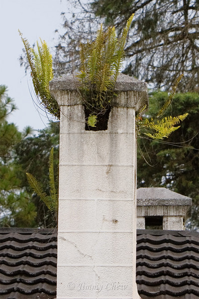 Unused chimney of Bukit Ruil bungalow.