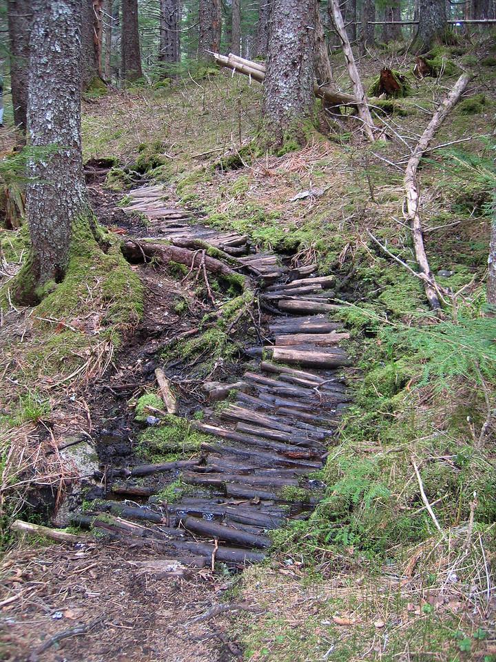 Log path