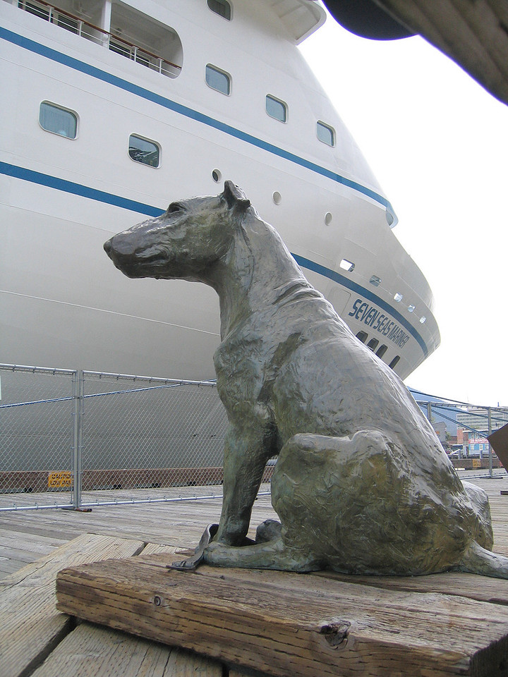 """Statue in memory of Patsy Ann.  Although deaf from birth, Patsy Ann somehow sensed when an incoming ship was about 1/2 mile away and had an uncanny ability to determine the doch where it would moor.  In 1934 Mayor Isadore Goldstein dubbed her """"Official Greeter of Juneau, AK"""".   She died in 1942."""