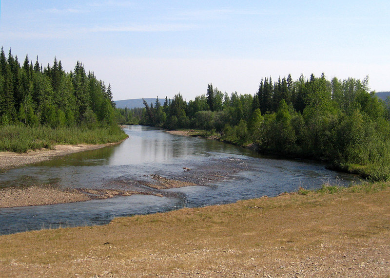 Chatanika River right along the Steece Highway