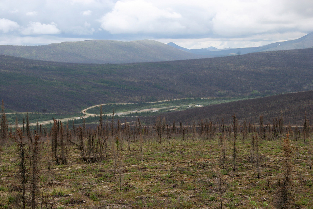 Nome Creek panning area in distance