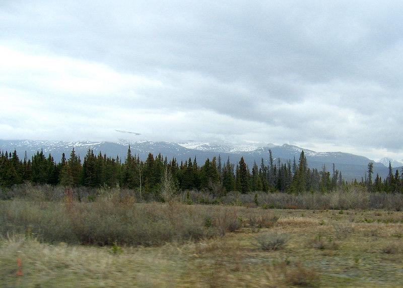 Bear Creek Summit