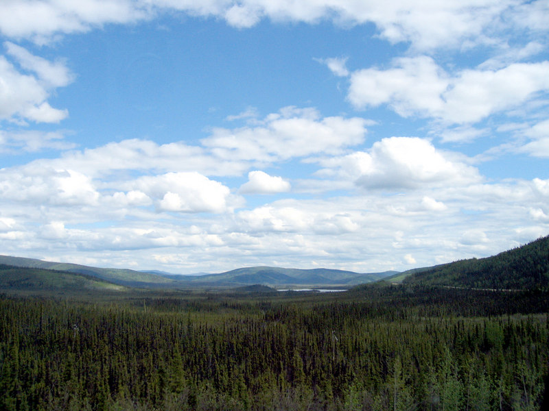 Tetlin National Wildlife Refuge about 80 miles from Tok, AK