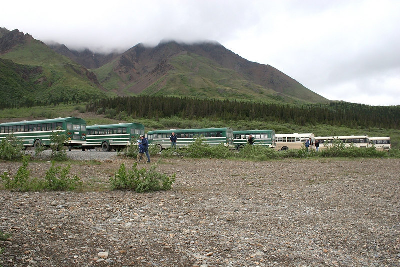 Buses at Toklat River Rest Stop