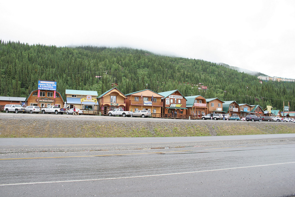 The Denali Park Commercial Area