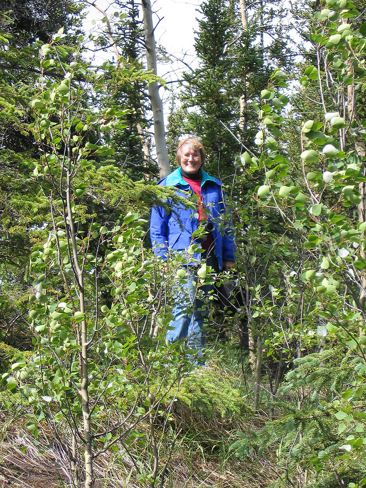 Susan at Denali Grizzly Bear Resort as we hiked the area