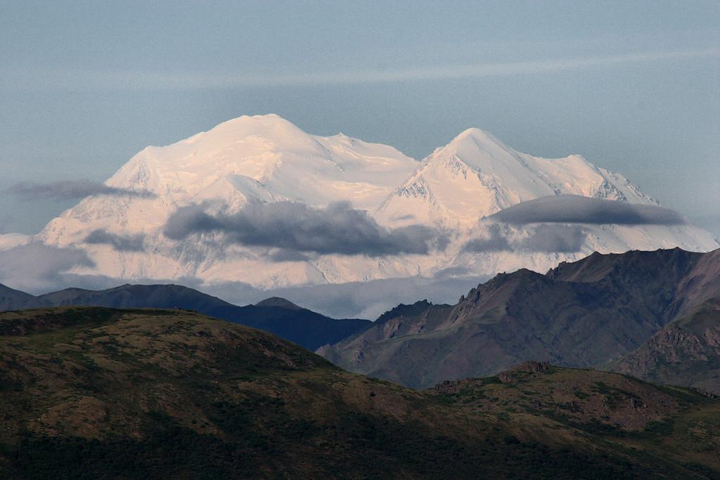 Denali from Primrose Ridge