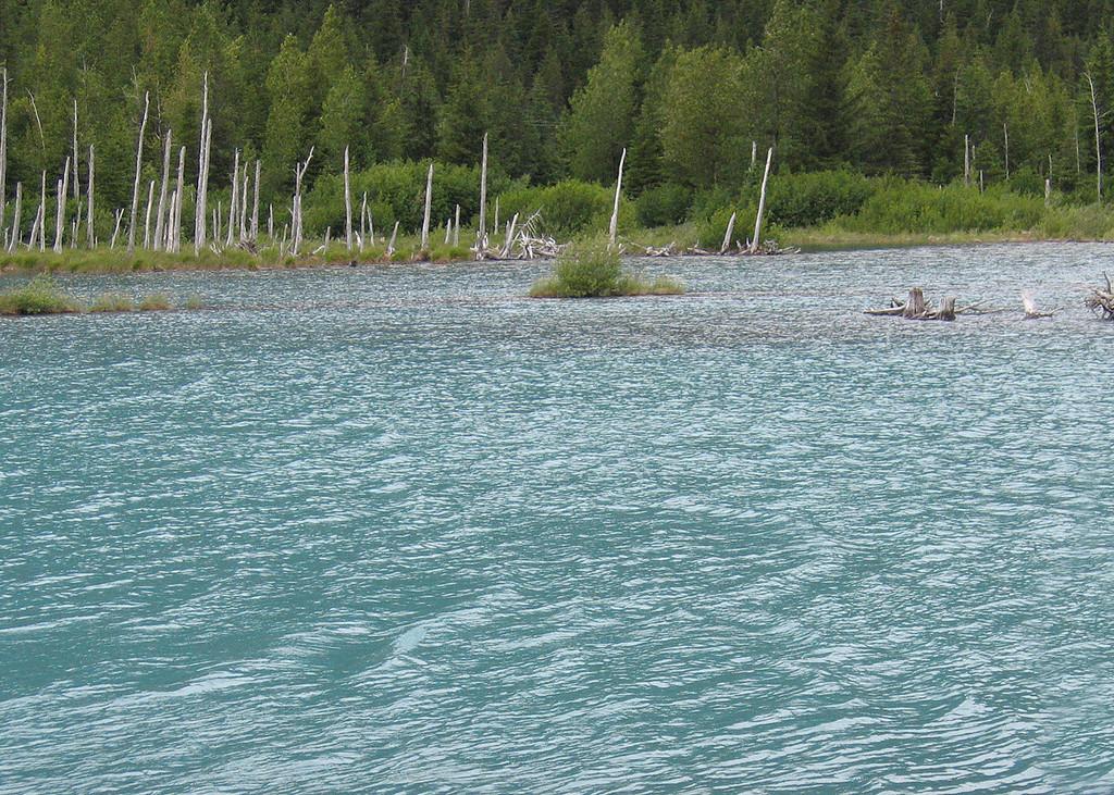 Lake below Explorer Glacier