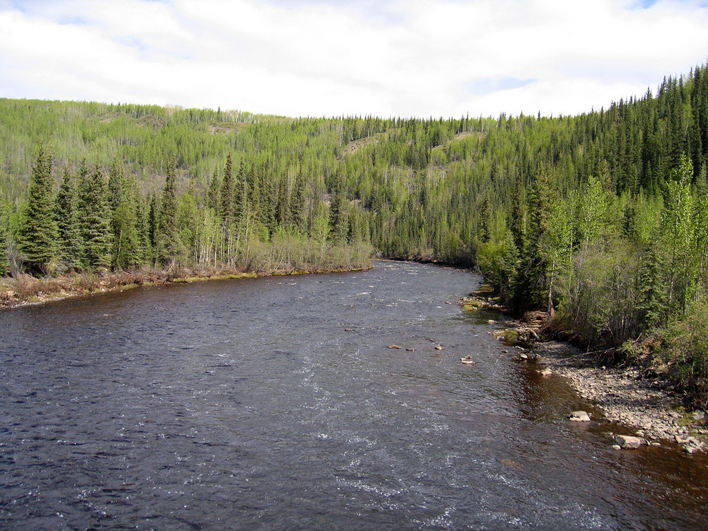 Mosquito Fork of the Fortymile River just  before Chicken, AK