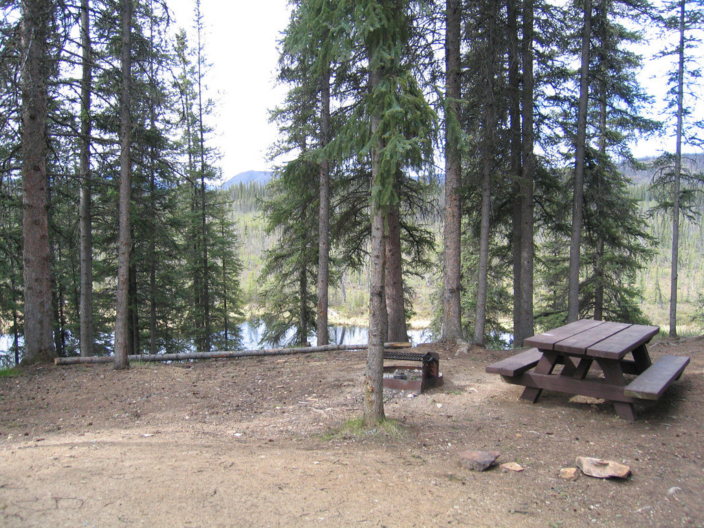 West Fork Campground about 15 miles from Chicken, AK