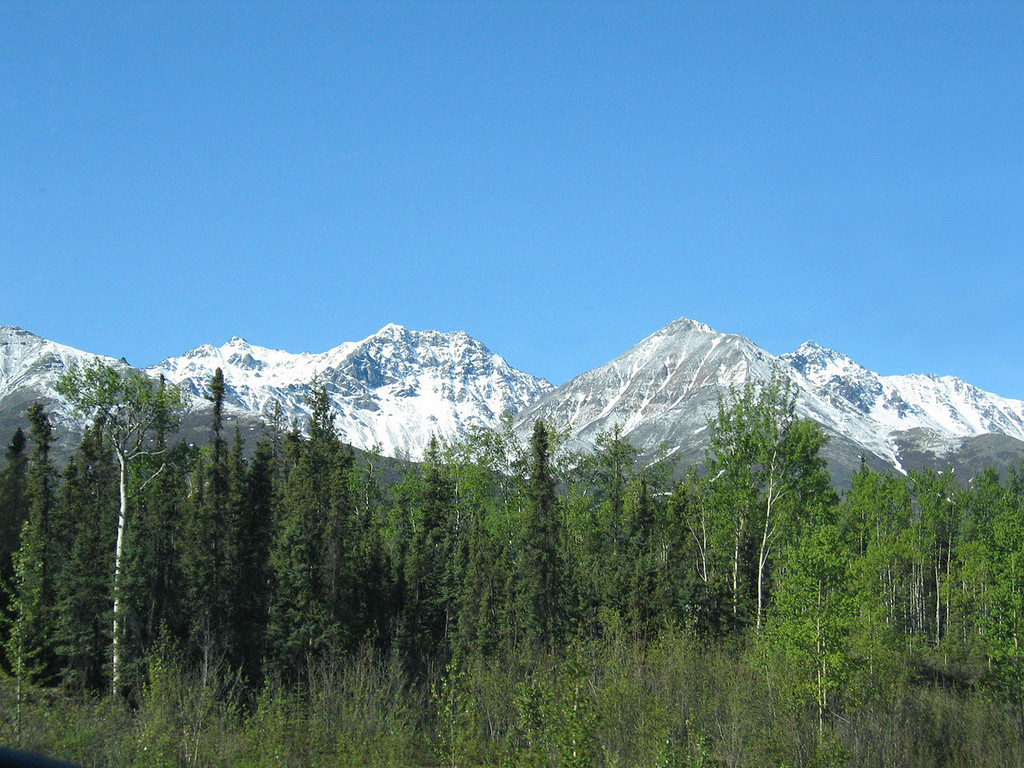 The Alaska Range about 25 miles north of Tok, AK