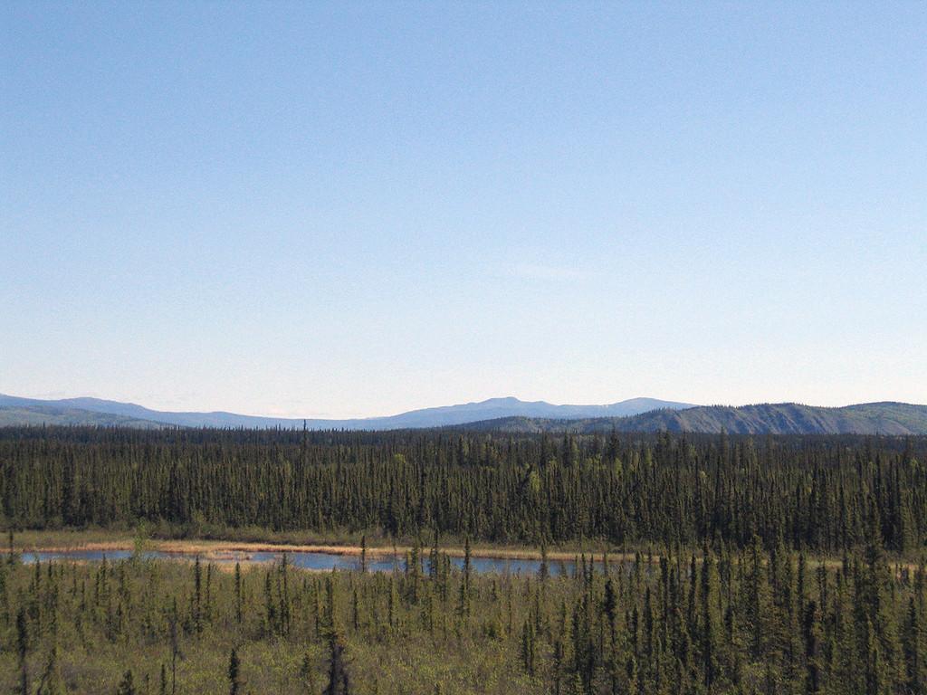 Around Dot Lake about 150 miles south of Fairbanks, AK
